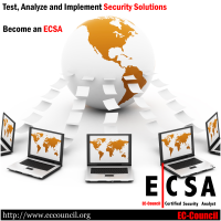 ECSA-2