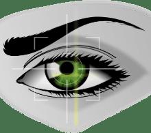 Iris Detection