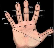 Hand Geometry Recording